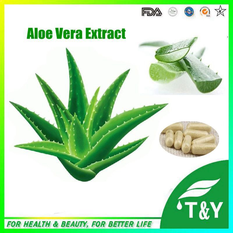 Certificated ISO Manufacturer Natural Bulk aloe vera dry extract Capsule 500mg*400pcs<br><br>Aliexpress