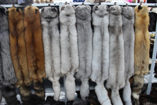 The real natural whole fox Richard necklet wholesale products sell like hot cakes fox fur scarf shawl(China (Mainland))