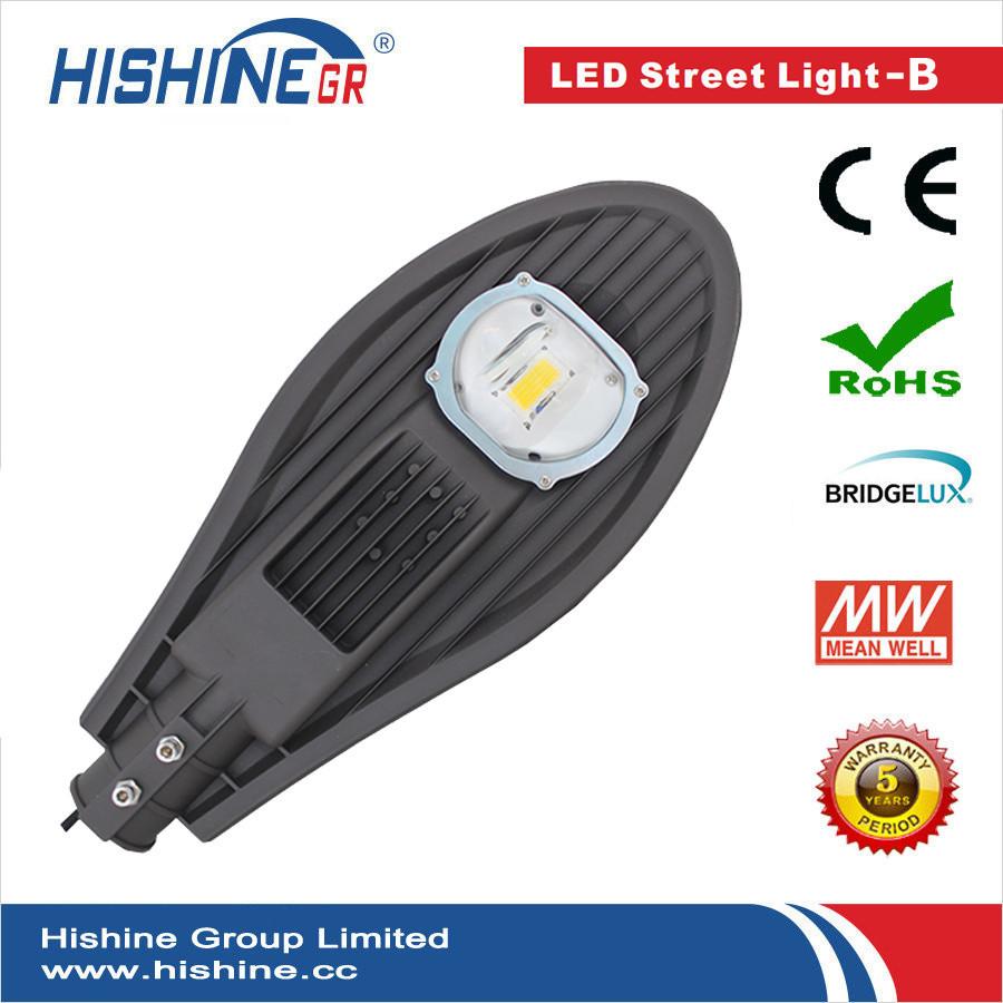 (4pcs/lot) DHL Free Shipping 40W LED Street Lights Bridgelux 45mil 4800lm AC85-265V Cool white or Warm white(China (Mainland))