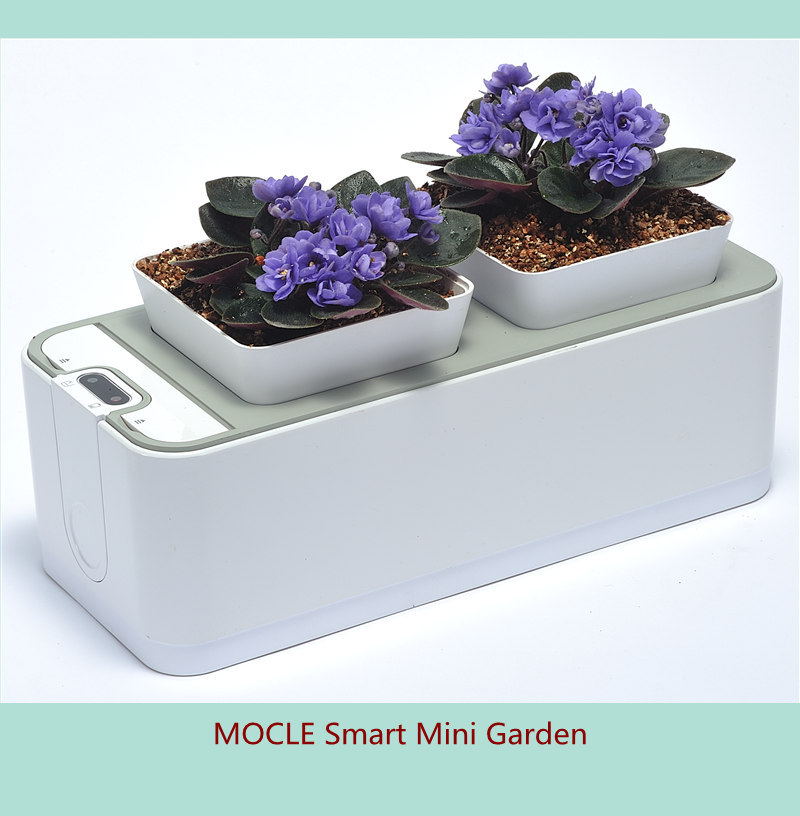 mocle smart mini garden best selling indoor hydroponics growing planter factory direct in flower. Black Bedroom Furniture Sets. Home Design Ideas