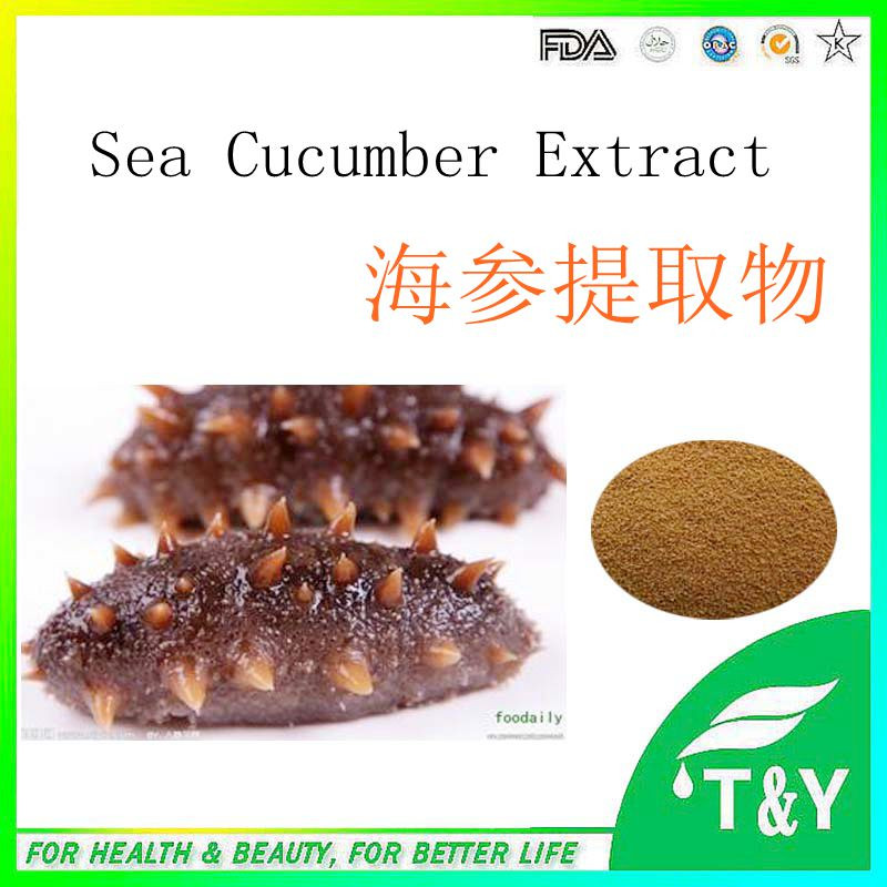 Best Selling Organic Sea Cucumber Extract   900g/lot