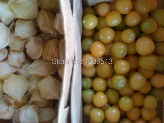 200/bag Pineapple Ground Cherries Mollys herb in china for health can eat baby love low price quality seeds(China (Mainland))
