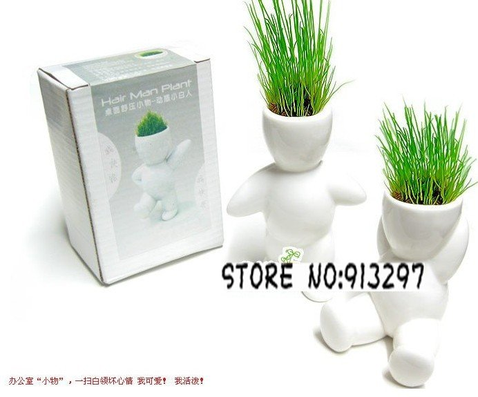 wholesale retail Creative Gift Plant big white Hair man Plant Bonsai Grass Doll Office Mini Fantastic Home Decoration(China (Mainland))