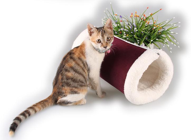 [해외]강아지 빨 매트 겨울 소프트 고양이 쓰레기 잠자는 터널 작은..