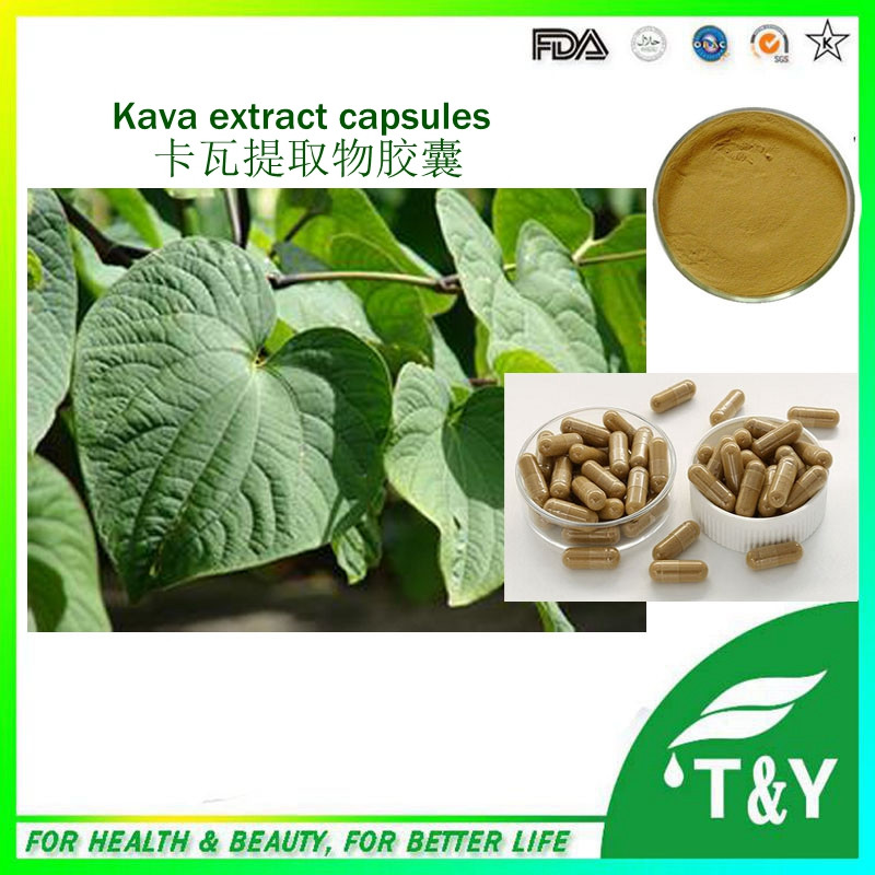 Kava kava powder relieve symptoms of throat pain kava kava root extract capsules  500mg*700pcs<br><br>Aliexpress