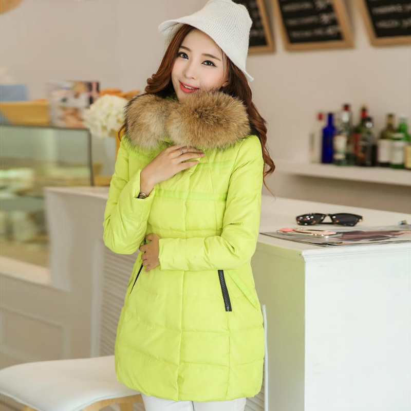 2016 New Winter Medium-long Plus Size thick Hooded Zipper Fur Collar Women Coat Black Yellow Green Rose - Beijing, China shopping center store