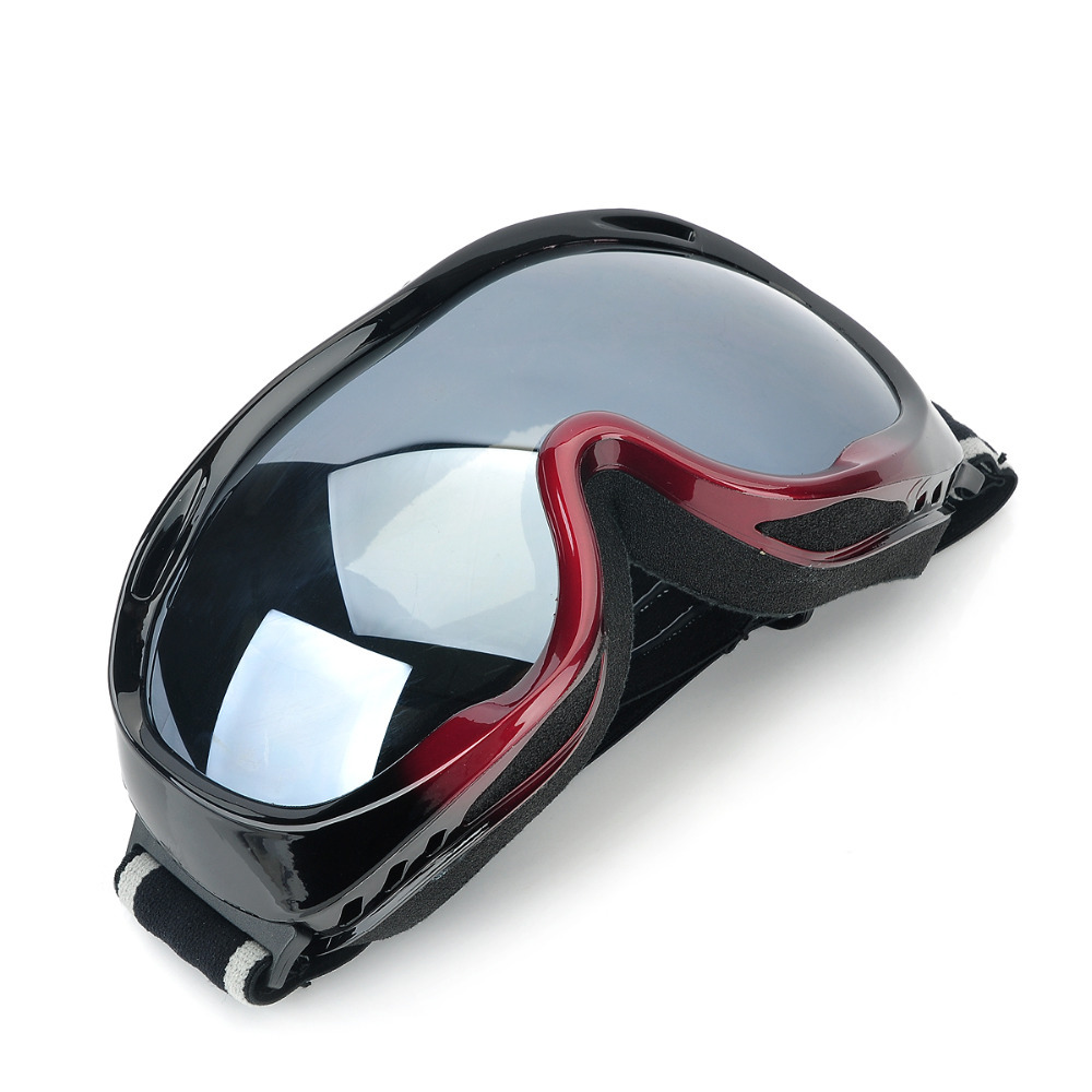 skiing and snowboarding Dual Layer Lens Safety ski goggles for outdoor snow sports activities ski goggles Suitable for woman(China (Mainland))