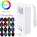 Motion Sensor Toilet Bowl Light Colorful Home Toilet Bathroom Motion Activated Dimmable LED Light Battery Operated