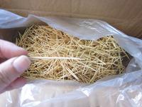 6000pcs/lot Toothpick in bulk bamboo toothpick advanced single-head toothpick double slider