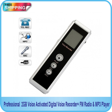 Free shipping! Professional 2GB Voice Activated Digital Audio recorder with FM & MP3 Player Function(China (Mainland))