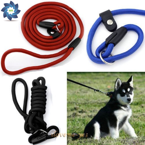 Pro Pet Dog Nylon Rope Training Leash Slip Lead Strap Adjustable Traction Collar leash for small dogs mascotas Free Shipping(China (Mainland))