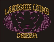 Buy LAKESIDE LIONS CHEER crystal transfer T shirt wholesale price for $37.05 in AliExpress store