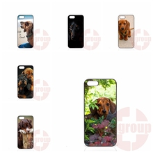 Cell Phone dachshund cute dog puppy BlackBerry 8520 9700 9900 Z10 Q10 Moto X1 X2 G1 G2 E1 Razr D1 D3 - My-Div-Phone-Cases 2016 store