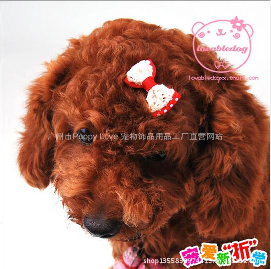 5 pcs/lot Lace Bowknot Pet Dog Hair Clips Hairpins Handmade Dog Hair Accessories Top-end Cat Hair Bows Animal Supplies Products(China (Mainland))