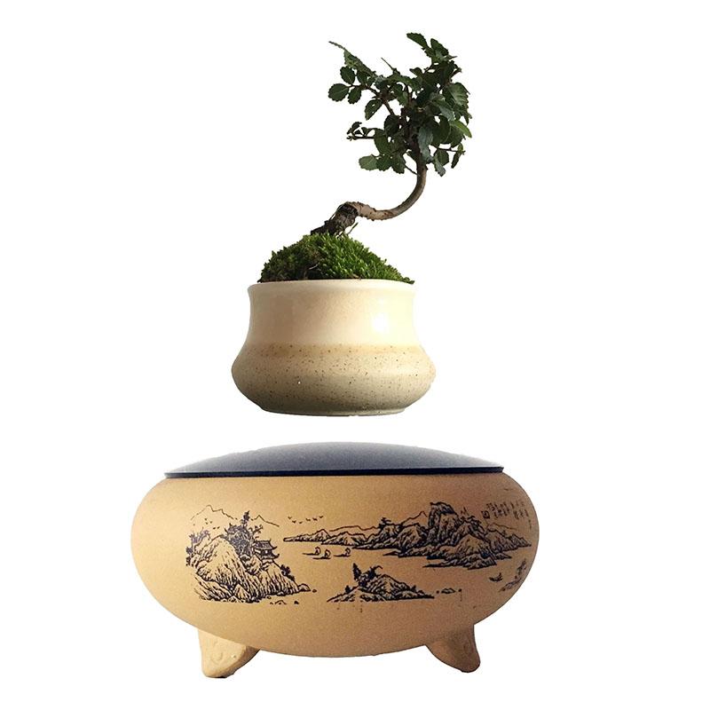 for Vasi giapponesi