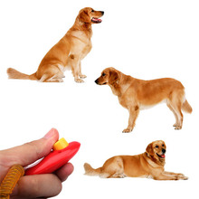 New Dog Pet Click Clicker Training Trainer Aid Wrist V3NF
