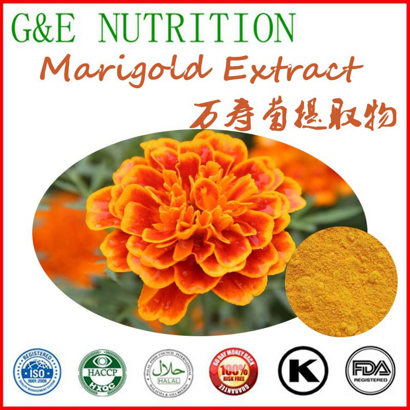 Bulk Fresh Flower Marigold Powder Extract / Dried Marigold Petals Lutein Extract 900g