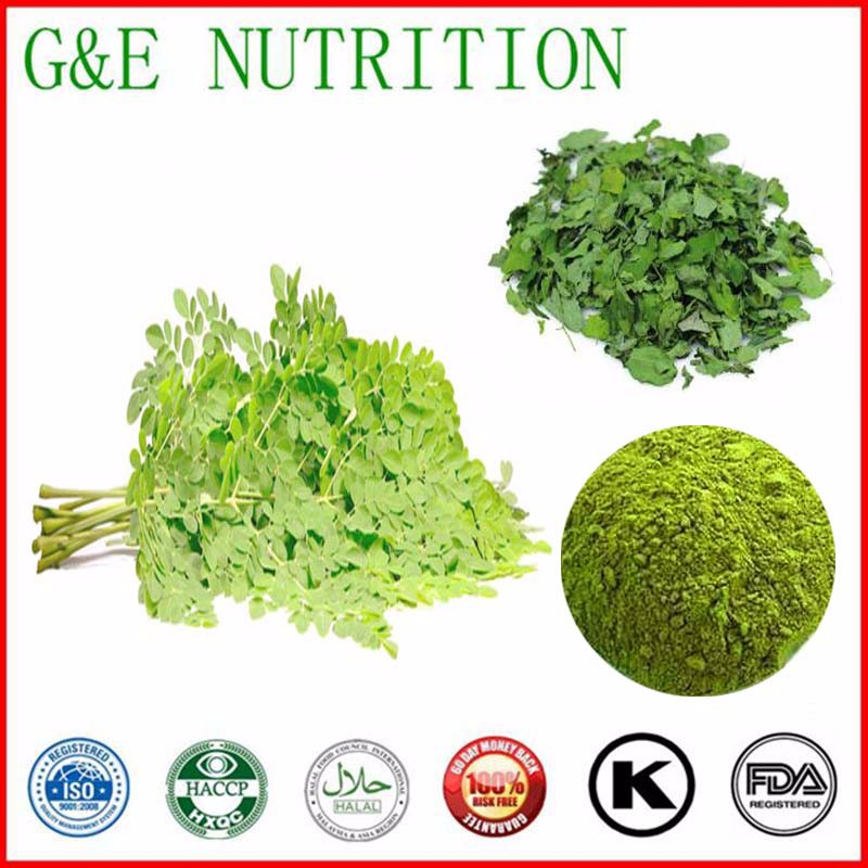 500g Natural Moringa oleifera/ horseradish tree leaves Extract with free shipping<br><br>Aliexpress