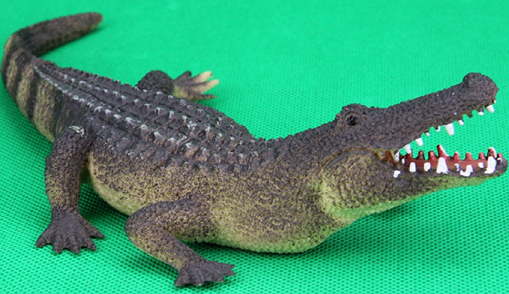 Shark Toys For Boys : Popular shark boy toys buy cheap lots from