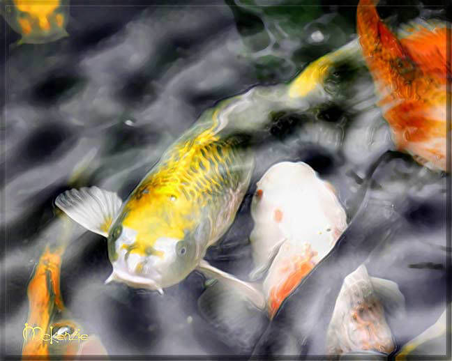 Free shipping japanese art yellow koi fish pond feng for Japanese koi carp paintings
