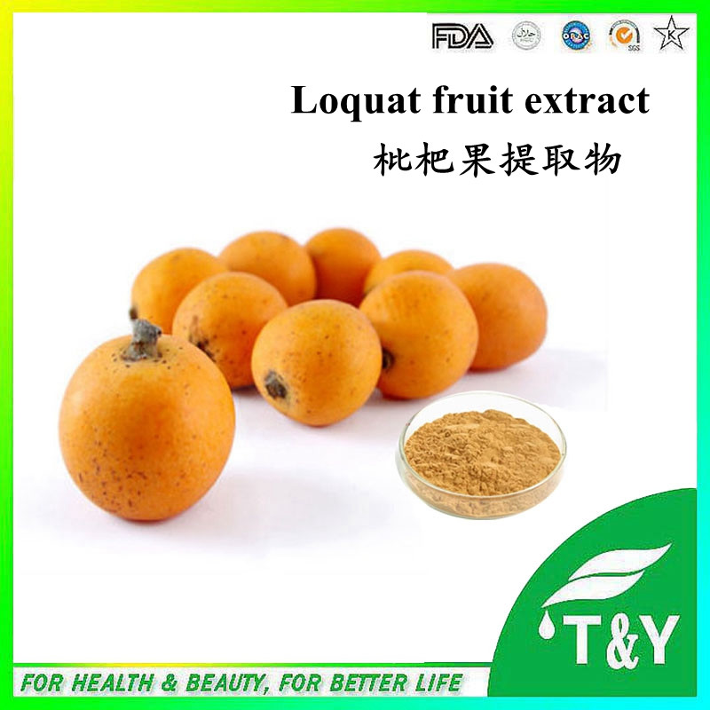 Mayorista chino Níspero extracto de fruta/polvo de ácido Ursólico 600 g/lote con el envío libre(China (Mainland))