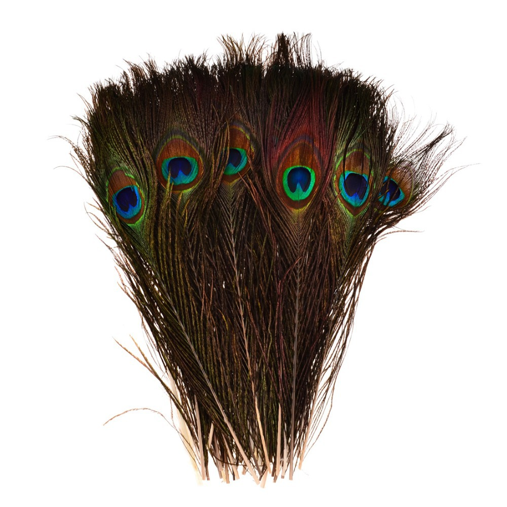 Buy promotion high quality pack of 50pcs for Where can i buy peacock feathers craft store