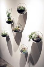 6 pcs/ensemble tenture bocal en verre, mur planteur vase pour la décoration intérieure, décor de jardin, maison ornement, pendaison de crémaillère cadeaux(China (Mainland))