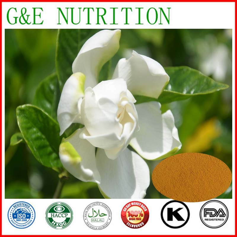Cape Jasmine  Extract with Gardenoside 1000g<br><br>Aliexpress