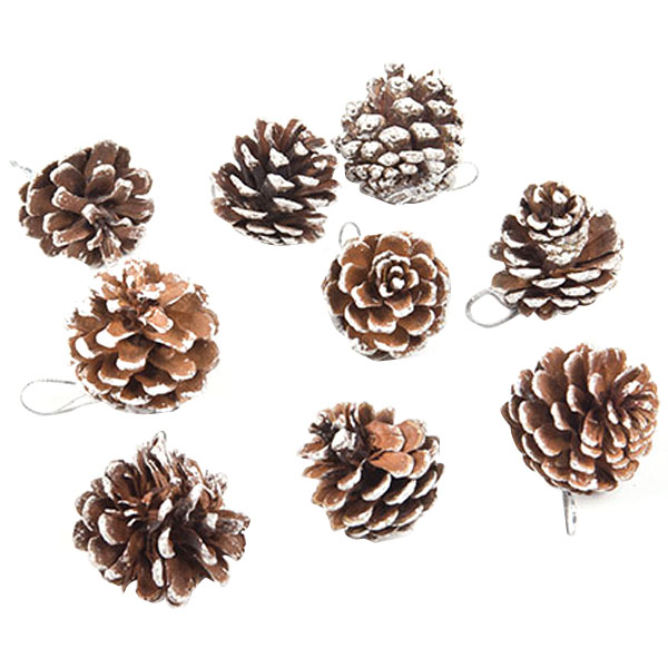 9 PCS/lot Real Natural Small Pine cones for Christmas Home Party Craft Decorations White Paint VBA12 P50(China (Mainland))