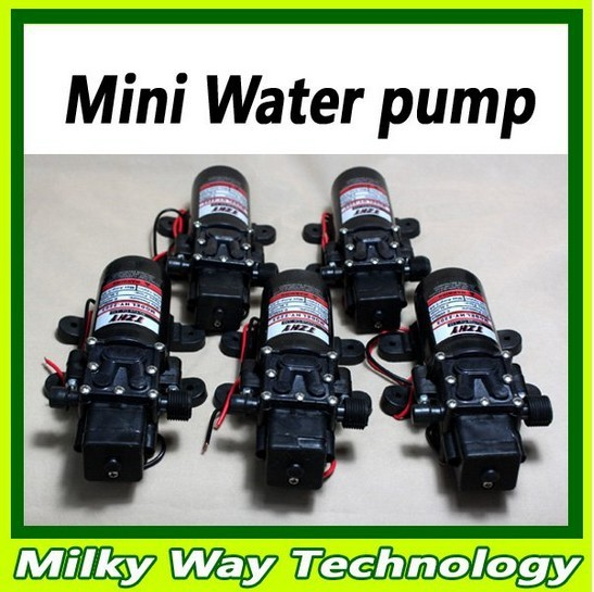 3L/Min 12V mini Intelligent  electric Water diaphragm spray Pump for  car washer cleaning ,#LX06008