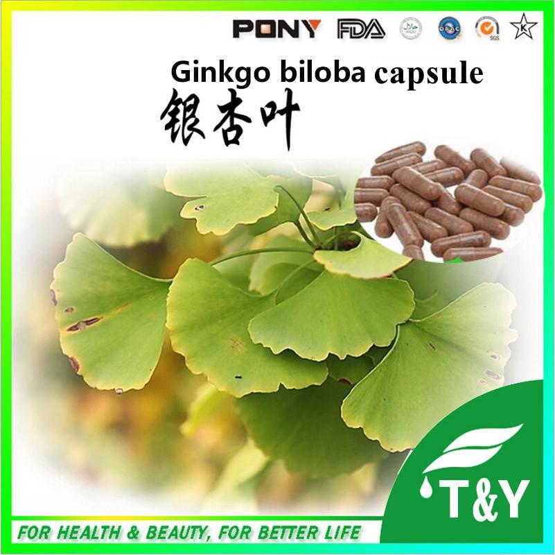 China green herbal Gingko Biloba Extract capsules  500mg*800pcs<br><br>Aliexpress