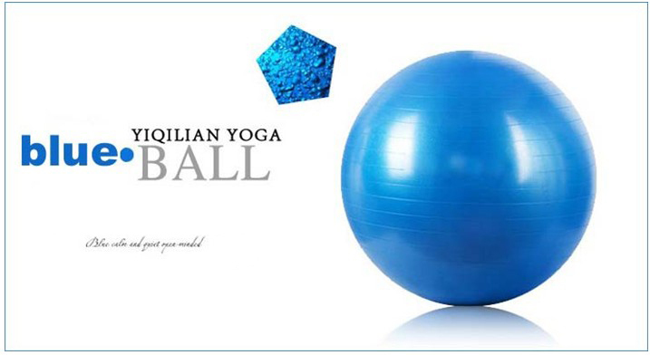 Free Shipping International Standard 65cm Gym Ball Fitness Pilates Aerobics Yoga Ball Slimming Exercise Ball with Free Pump(China (Mainland))