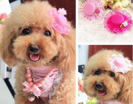 pet accessories Lovely Pink Lace Rose Pets Hat hairpin / Poodles Dogs / Cat Grooming For Girls Jewlery. MF(China (Mainland))
