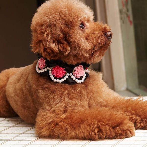 Pet Dog Puppy Neck Collar Lace Rose Pearls Pendant PU Leather Collar Adjustable Wholesale(China (Mainland))