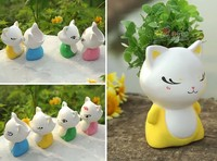 G22 cute kitty cat shape with green grass seeds of Hair planted Bonsai plants