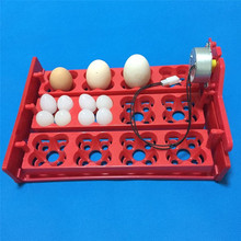 12 eggs /48 Birds eggsTray Automatic Incubator Automatically turn the eggs Chickens, ducks and quail dove for the birds Motor(China (Mainland))