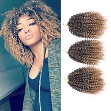 3pcs/set 8inch Curly Crochet Hair Extensions Synthetic Braiding Hair Crochet Twist Braid Hair(China (Mainland))