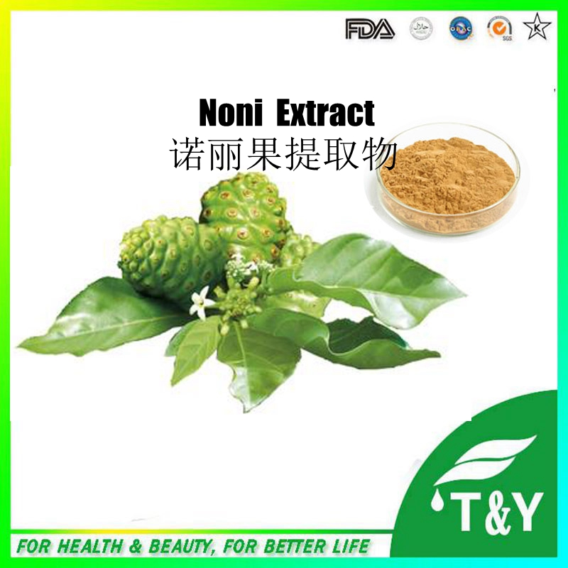 wholesale China Best Selling High Quality Natural Noni Extract 1KG/lot<br><br>Aliexpress