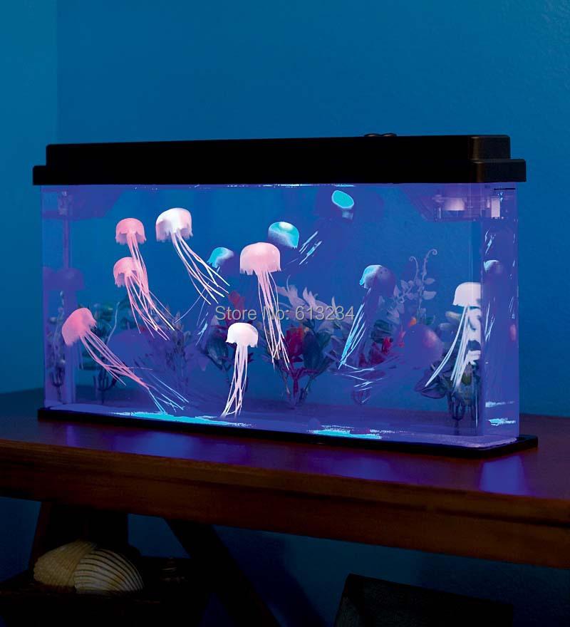 M duses aquariums achetez des lots petit prix m duses for Aquarium petit prix