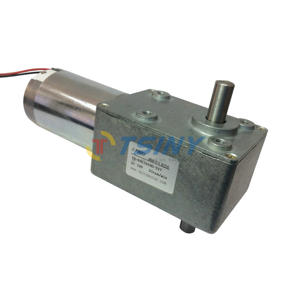 24v 20rpm dc worm gear motors brush dc motor double shaft for Electric motor shaft types