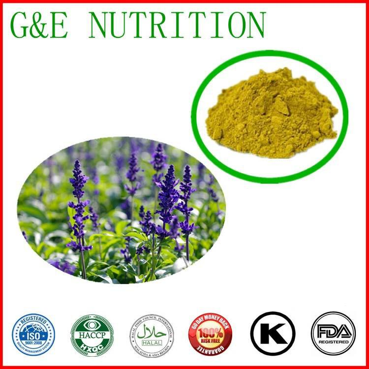 2015 New Arrival Sage Leaf Extract with best price, 300g/bag(China (Mainland))