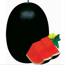 50 PCS Giant Watermelon Seeds Black Tyrant King Super Sweet Watermelon Home Gardening(China (Mainland))