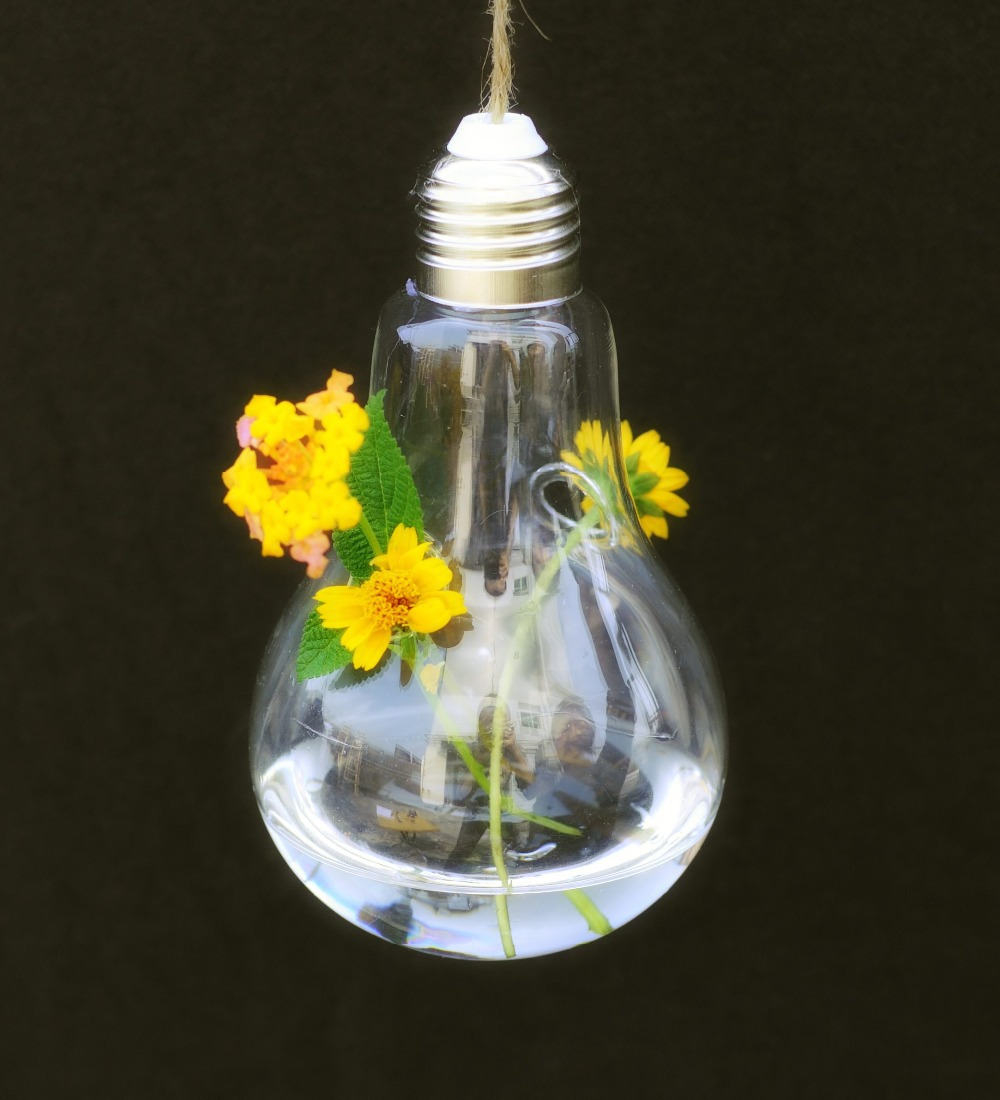 Hanging Light With Planter: Light Bulb Glass Hanging Planter Container Vase Pot Home