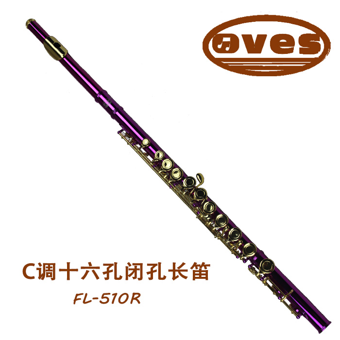 Best Flute Metal Musical Instruments Students Gold Plated Flute 16 C Key Holes Closed with Case / Cloth / Screwdriver FL-510R(China (Mainland))