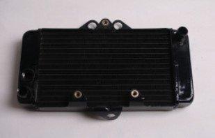 Фотография Brand new Radiator Cooler Cooling For Honda VTR250 1997-2007 98 99 00 01 02 03