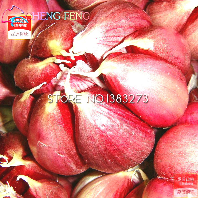 100pcs Garlic Seeds Red Healthy Bonsai Seeds Green Vegetable Seeds Plant Decoration Very Easy Grow Home & Garden Free Shipping(China (Mainland))