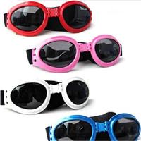 реальные ограниченные унисекс ацетат Велоспорт Велоспорт очки солнцезащитные очки 1шт красный водонепроницаемый многоцветные собаку