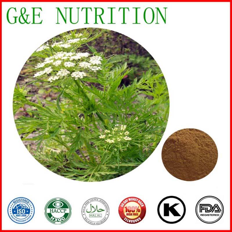 Common Cnidium Fruit extract,Natural Common Cnidium Fruit P.E. 500g