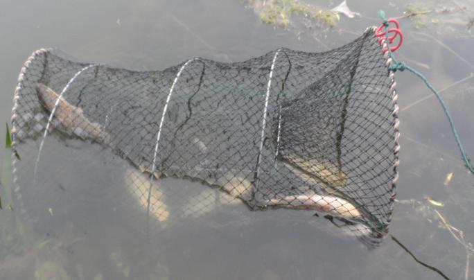 рыболовные сети дешево тюмень