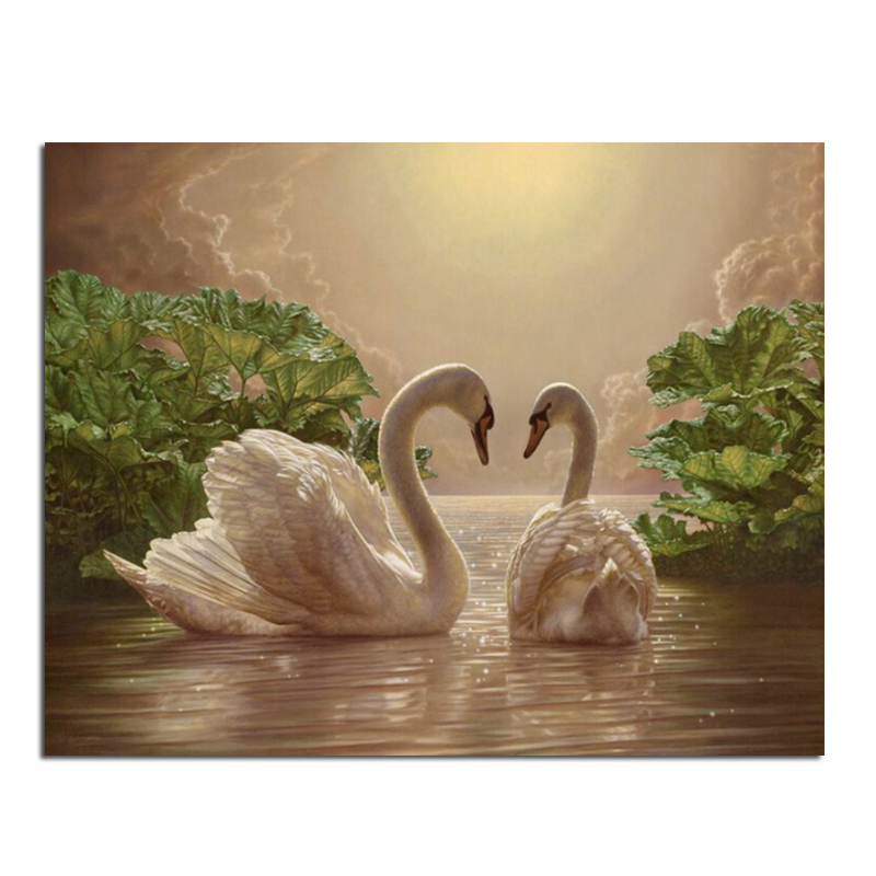 Spring Swan 60x47cm New 100% Full Area Highlight Diamond Needlework Diy Diamond Painting Kit 3D Diamond Cross Stitch Embroidery(China (Mainland))